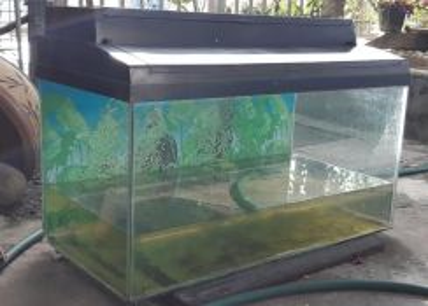 Fish tank 30inch