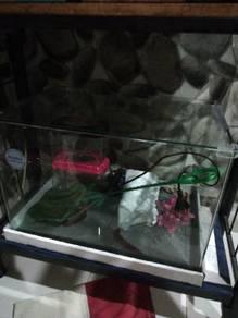 Akarium ikan
