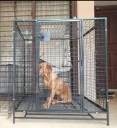 New Dog cage for medium n large size breed