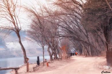 4D3N/5D4N South Korea | AMI Travel