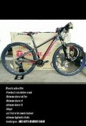 Basikal / bicycle 29er