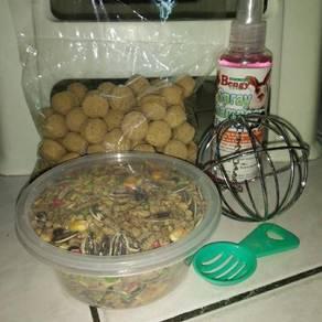 Hamster foods n accessories