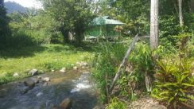 Tanah Di Janda Baik Ada Jalan Tar Dekat Sungai,Resort dan Madrasah