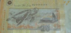 Ringgit Malaysia RM20 solid number AU1111111