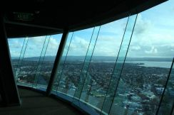 AMI Travel | Sky Tower Day Tours, New Zealand
