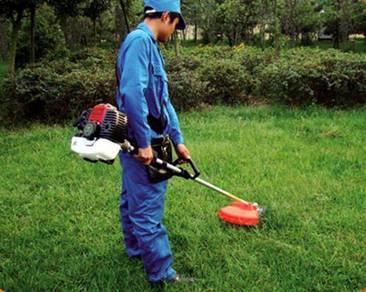 Penghidmatan servis pemotongan rumput