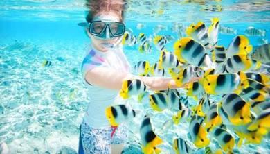 AMI Travel | Seawalking & Snorkeling at Sabah