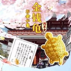 Japanese golden tortoise(money turtle)