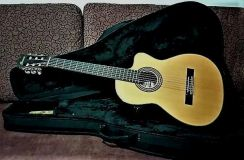 IBANEZ Pro Classical Cutaway with GATOR Case