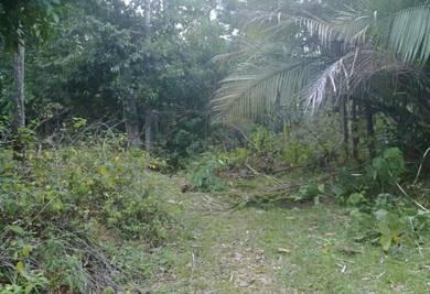 Tanah Pertanian, Janda Baik, Bentong