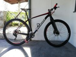 Specialized epic ht 29er (L 19)