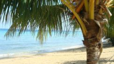 AMI Travel | Dumba Bay Resort 2D1N P. Tioman