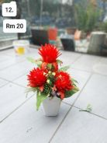 (12) Flower / Bunga