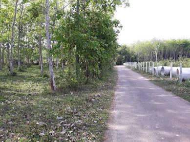 Tanah Pertanian/ Kampung