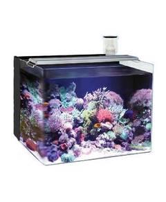 OF Nano Reef Tank 96Liter