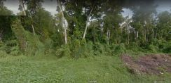 Commercial land in port dickson