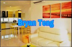 Orchard Ville 1260sf Nicely Renovated High Floor Sungai Ara