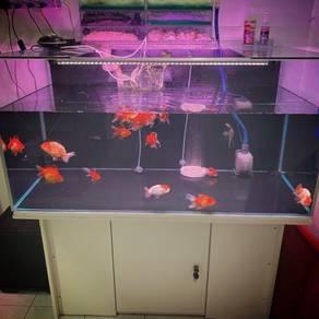 Used 4ft. Aquarium to sell