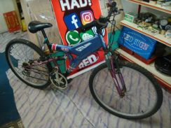 Citilink bicycle