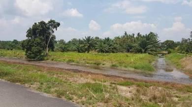 4.5 Acres/River beside/Below Bank Value/200m Main Road/Tar Road/Benut