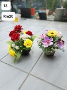 (13) Flower / Bunga