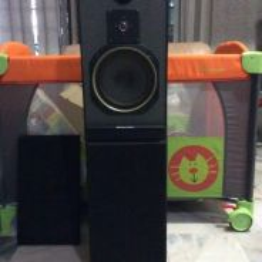 Hi Fi Speaker