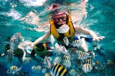 AMI Travel | Snorkeling package P.Tioman 4D3N