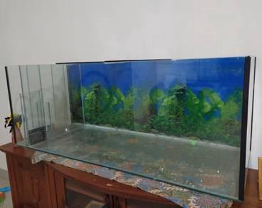 Fish tank/ fish aquarium with filter/ tangki ikan