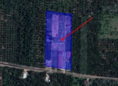 GOOD BUY! 5 Acres FREEHOLD Agricultural Land Sri Gading Batu Pahat