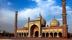 AMI Travel | 8D7N Golden Triangle with Goa