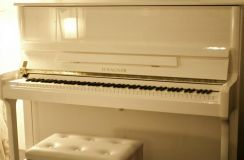 Wagner hl122wh piano - new 10 yr's warranty