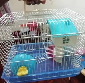 Sangkar hamster murah