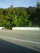 Vacant land for rent in balik pulau