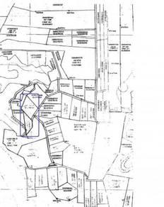 CL Oil Palm Land, Kalumpang B, Mile 49 ½ , Jalan Tawau-Semporna