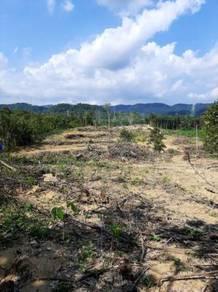 Agriculture Land 1.8 acres- Pekan Lenggeng N. Sembilan