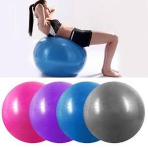 Exercise gym ball 65cm