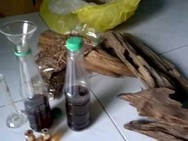 Minyak Gaharu India