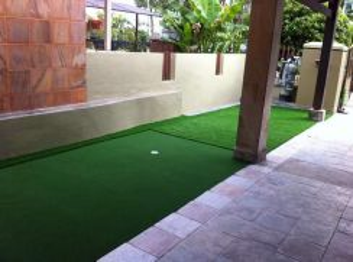 Golf green turf training grass