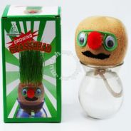 Growing Grass Head Home Kitchen Room Decoration s