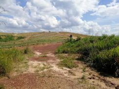Land in Rompin, Pahang for Sale