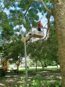 Perkhidmatan tebang pokok/bersih kawasan/skylift