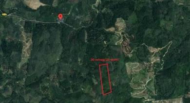 Junjong Agricultural Land | 21Acres | Kulim