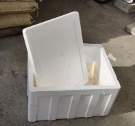 Second hand fish foam box