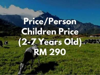 BlueGreen Sabah Tour & Car Rental