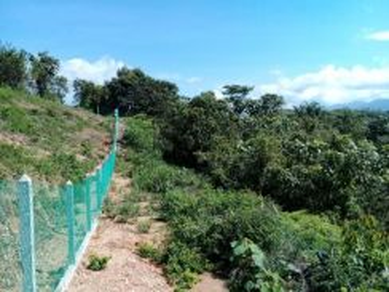 1 acre Agri Land at Kundur Hulu, Linggi, Negeri Sembilan