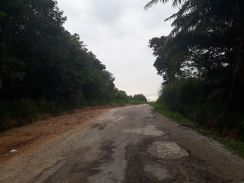 Land in Desa Cemerlang For Sale