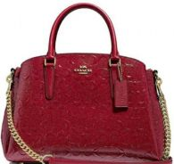 Coach sage carryall in signature leather