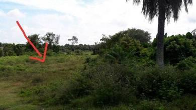 Tanah Kuala Linggi untuk dijual