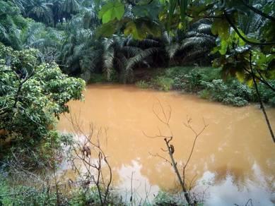 2.245acres Agri land at Exevalley Orchard Park, Linggi, N. Sembilan