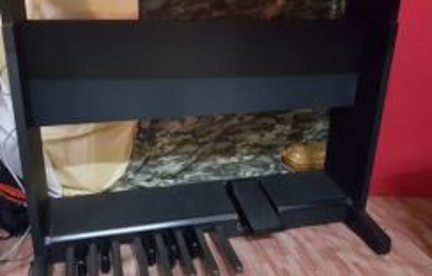 Organ piano technics EX AE1 spare parts